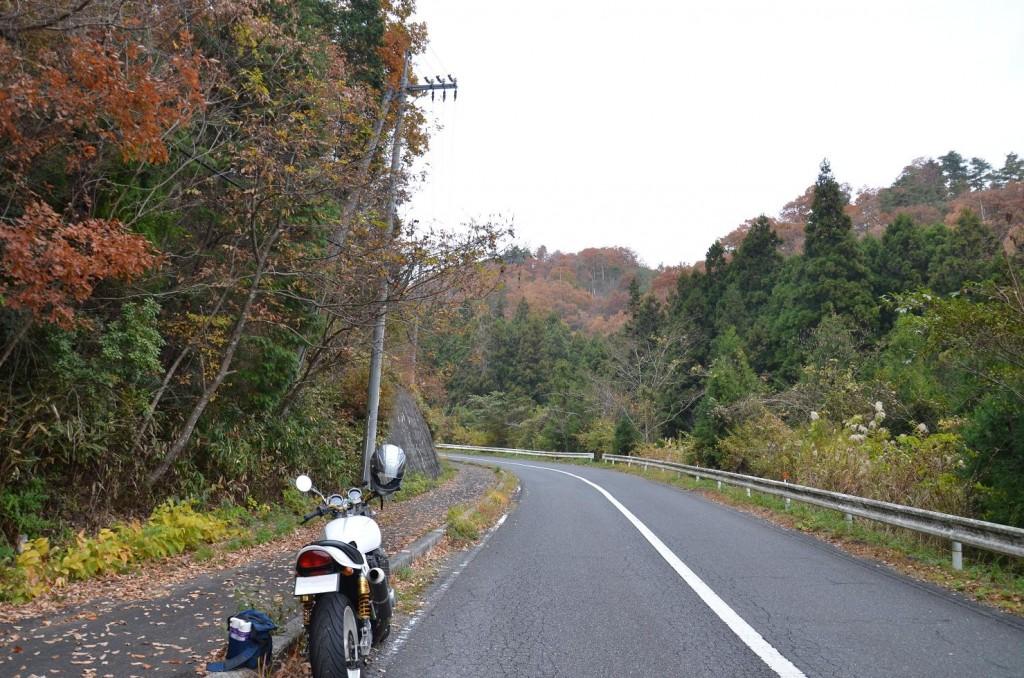 湯来温泉への道